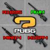 Guess The Gun Sound PUBG