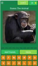 Guess The Animal Quiz Animal Trivia_最新版下载_攻略_礼包_九游就
