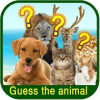 Animal Guessing Puzzle