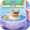 beautiful caring dog game