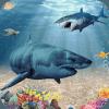 超级怪物蓝鲸鲨鱼游戏