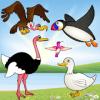 小鸟游戏的孩子游戏为幼儿的鸟类物种
