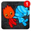 Fireboy & Watergirl  Platform Game