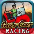 高尔夫车赛车