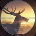 Bg Bucks Dr Hutr 2019 Amal Hutg 3D