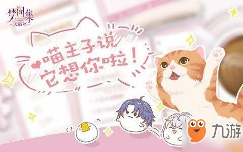 梦间集天鹅座怎么吸引名贵猫 吸引名贵猫方法详解