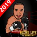 彩票投注四大技巧,Boxing PunchTrain Your Own Boxer