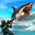 鲨鱼猎杀者
