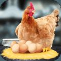 母鸡护蛋模拟器