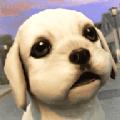 家养小狗模拟
