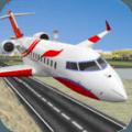 城市 平面 飞行 模拟器