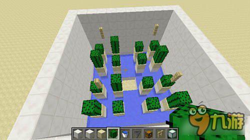 仙人掌农场怎么做 我的世界仙人掌农场建造技巧