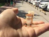 pokemon go很流行 有精灵的地方就有人