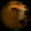 棕熊生存模拟器