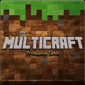 Multicraft服务器