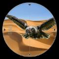 鸟类猎杀沙漠