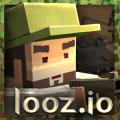 loozio