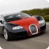 Bugatti and Ferrari Game
