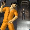 Escape Prison Plan - Break the Jail, Agent Survive