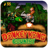 SNES Dnkey Kong country Adventure