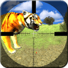 Safari Animals Hunting Sniper Shooter Lion Hunting