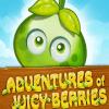 Adventures Of Juicy Berries
