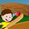 Ball Spring
