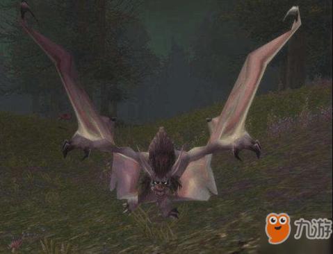 魔兽蝙蝠的粪便图片