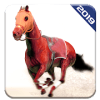 Angry Horse Racing 3D Simulator