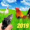 Chicken Shooter  Animal hunting 2019