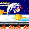 Runner Hedgehog Classic