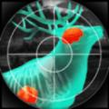 猎人与射手3D