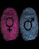 性别扫描器